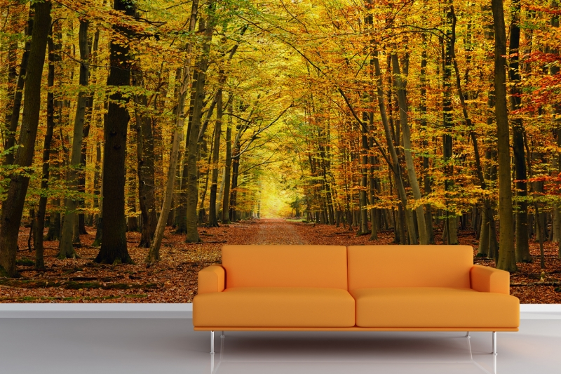 Autumn-Pathway-Tree-Wall-Mural-Room_0