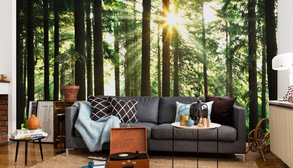 forest-wallpaper