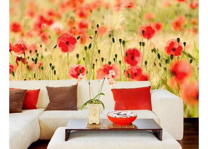 fototapete-papier-no18-dream-of-poppies-400x280cm-1
